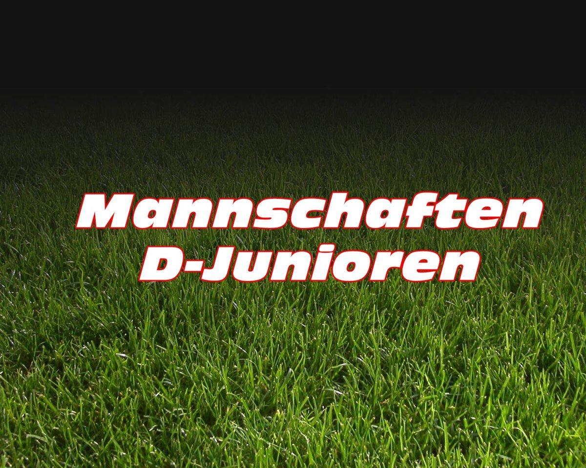 2015 D-Junioren U13