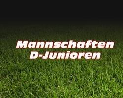 2016 D-Junioren U13